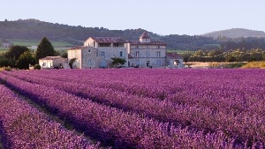 France Luxury Real Estate for Sale