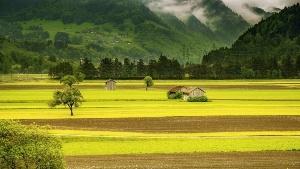 Switzerland Luxury Real Estate for Sale
